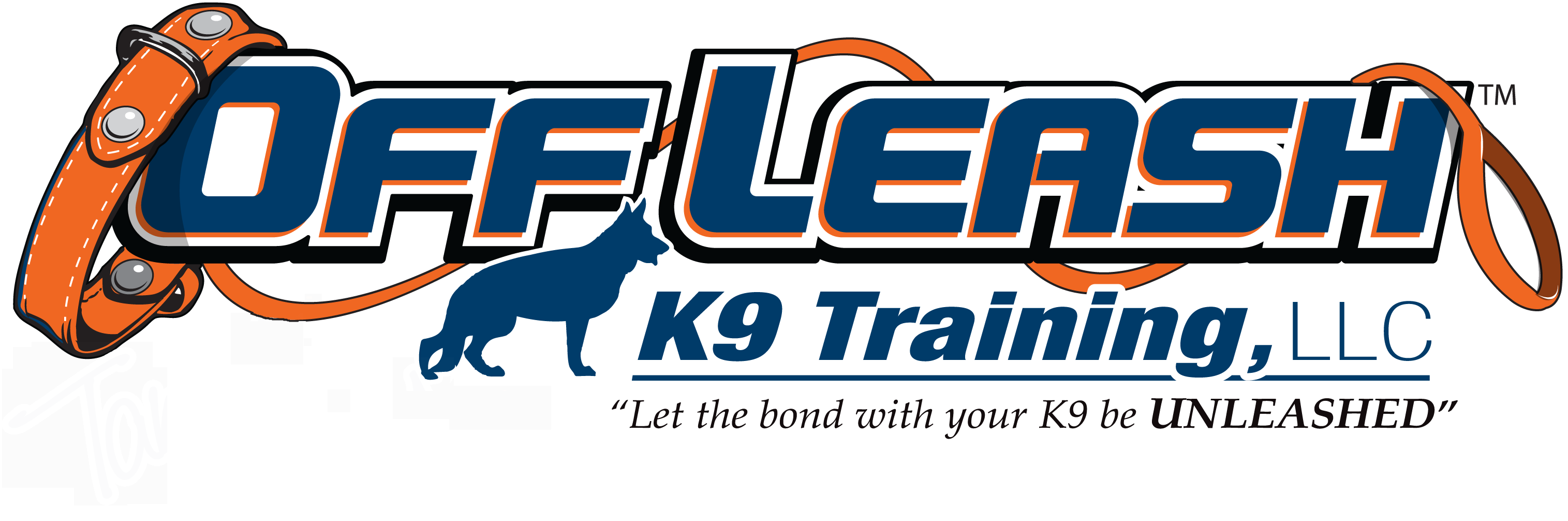 Offleash K9 Dog Training Washington DC